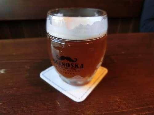 Beer Glass Refreshment Thirst Beer Garden