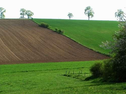 Belgium Landscape Field Furrow