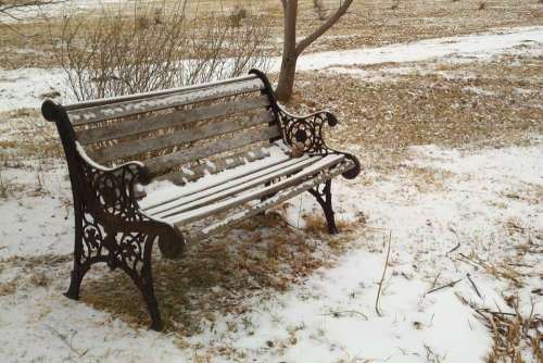 Bench Park Snow Winter Grass Cast Iron Wood Seat
