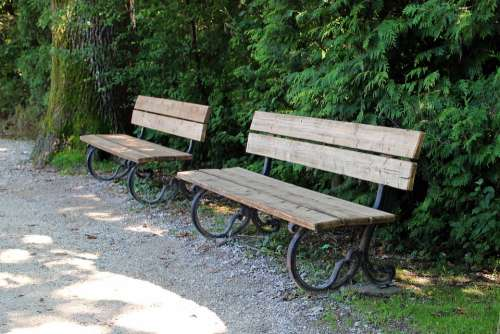 Bench Benches Bank Seat Out Nature