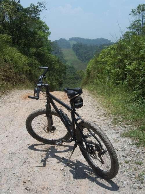 Bike Two Wheels Nature Green Earth Landscape