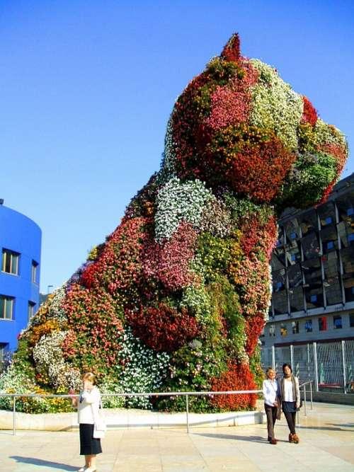 Bilbao Spain Figure Flowers Dog Beautiful Sky