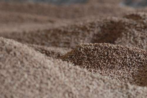 Biomass Renewable Energy Olive Olive Bone