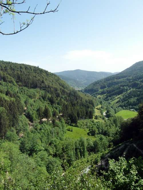 Black Forest Valley Outlook View Landscape Nature