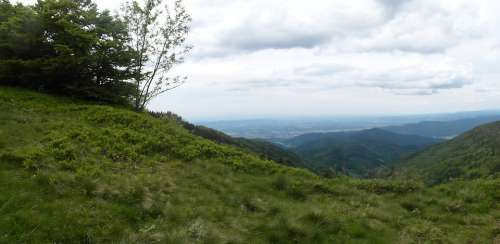 Black Forest Hill Rhine Valley Schauinsland Summer