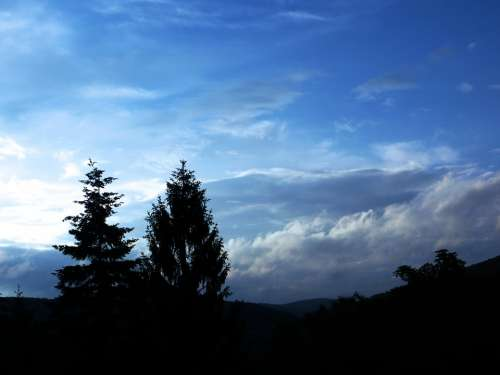 Blue Sky Backlighting Trees Clouds Dramatic Clouds