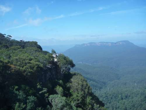 Blue Mountains Cliff Edge Forest Australia