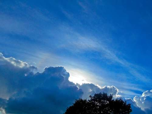 Blue Sky Cloud Hope Summer Pine Tavern Stockholm