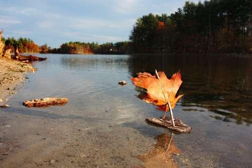 Boat Toy Play Fall Pond Autumn Leaf Season Sail