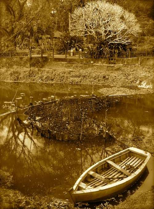 Boat River Riverbank Tree Retro Eerie Lake Dark