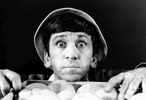 Bob Denver Actor Comedy Television Tv Retro