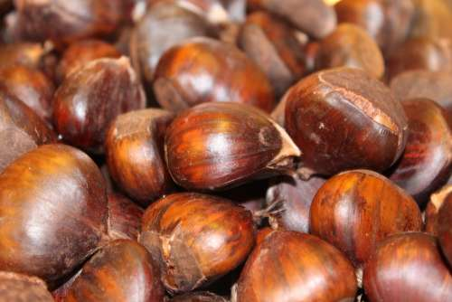 Boiled Chestnuts Cooked Recipe Sweet Food Drink