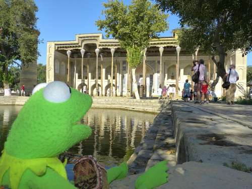 Bolo Hauz Mosque Columnar Kermit Frog