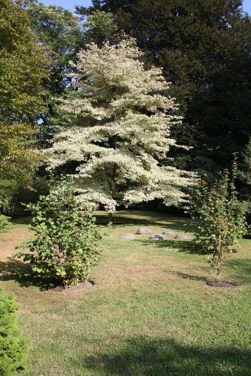 Botanical Garden Verbania Italy