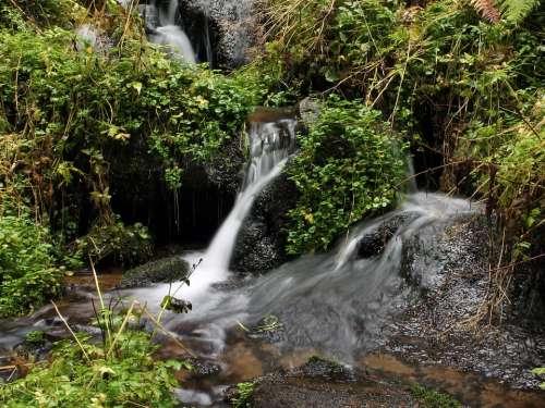 Bourn Grass Water