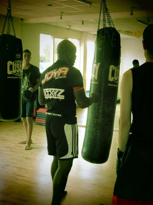 Boxing Endurance Training Discipline