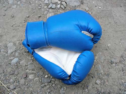 Boxing Sports Gloves Strong