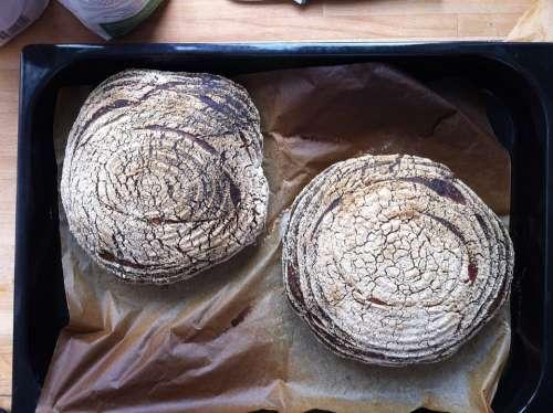 Bread Sourdough Bread Freshly Baked Bake Baking