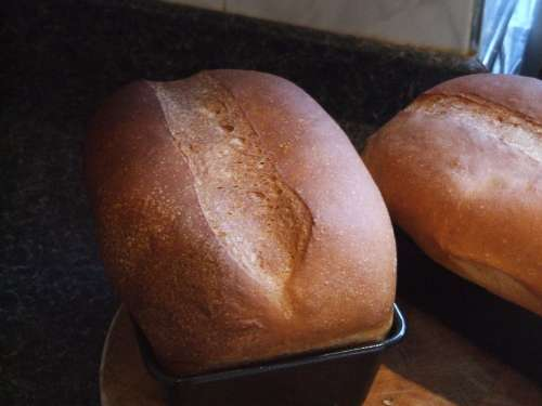 Bread Loaves Baking Loaf Fresh Food Wheat White