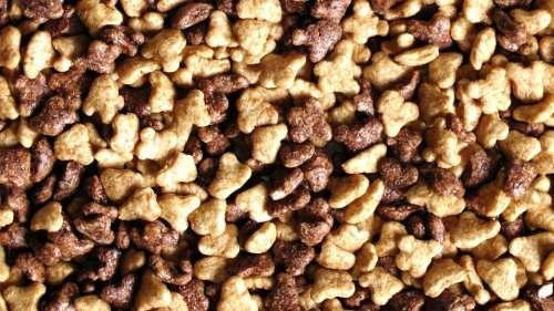 Breakfast Cereal Cereal Breakfast Food Cook