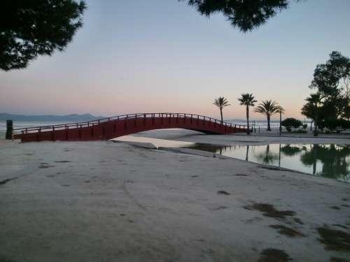 Bridge River Mirroring Palm Trees Sea Reflection