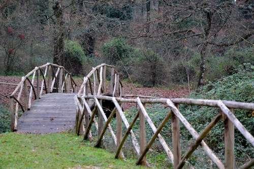 Bridge Ponte Di Legno Forest Nature