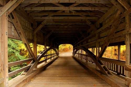 Bridge Covered Bridge Forest Forest View Autumn