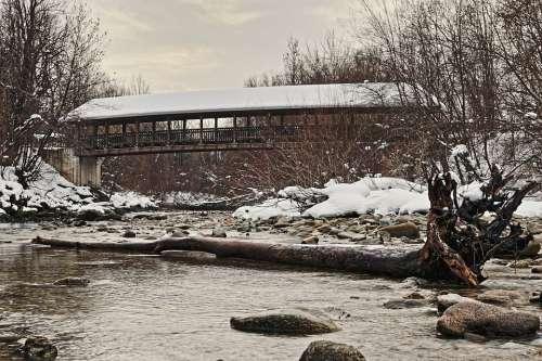 Bridge Tree Nature Landscape Scenic Water River