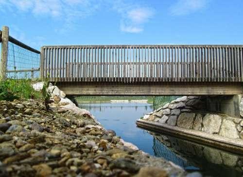 Bridge Lake Nature Water Relaxation Natural Park