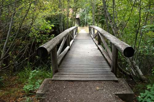 Bridge Nature Creek Wooden Path Natural Park