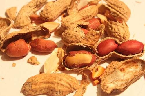 Broken Peanut Roasted Shell Skin Smashed Food