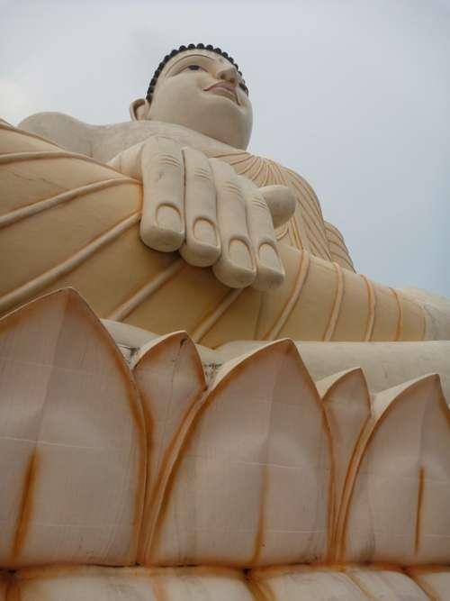 Buddha The Statue Buddhism