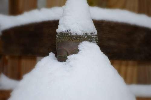 Buddha Snow Winter Holy Spiritual Sacred Buddhist