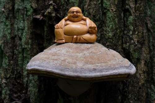 Buddha Meditation Spirituality Zen Image Rest