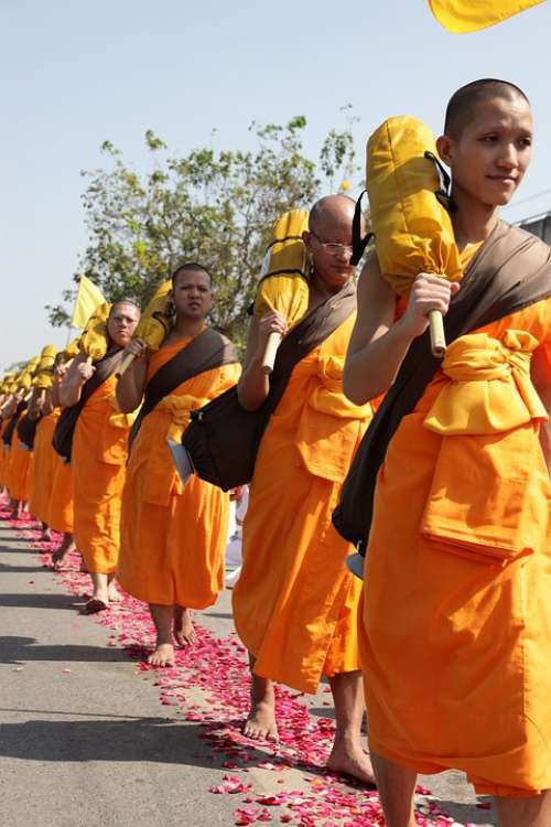 Buddhists Monks Buddhism Walk Orange Robes Thai