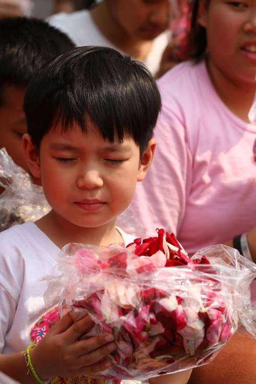 Buddhists Rose Petals Children Monks Tradition