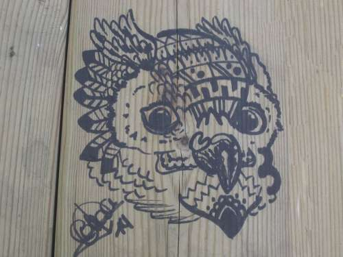 Buho Wood Drawing