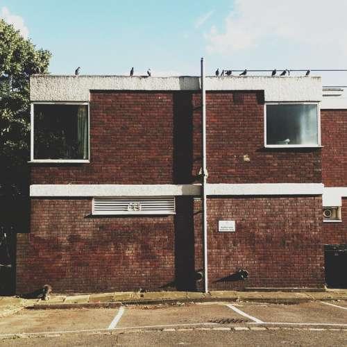 Building Birds Roof Architecture Street Urban