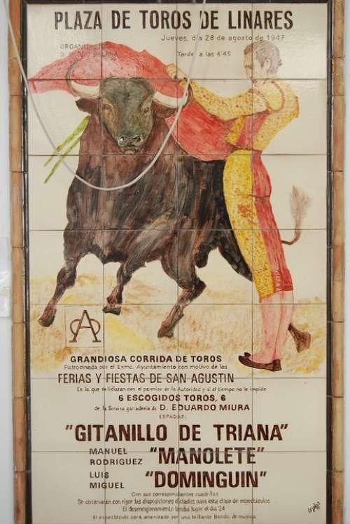 Bull Torero Spain Playbill