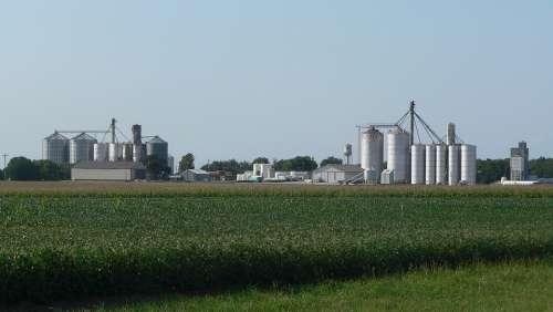 Byron Nebraska Fields Crops Agriculture