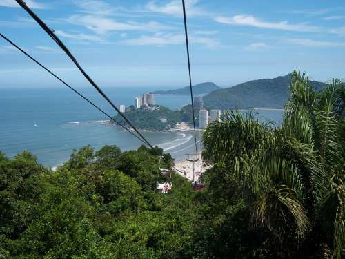 Cable Car Atlantic Forest Forest Tropical Vegetation