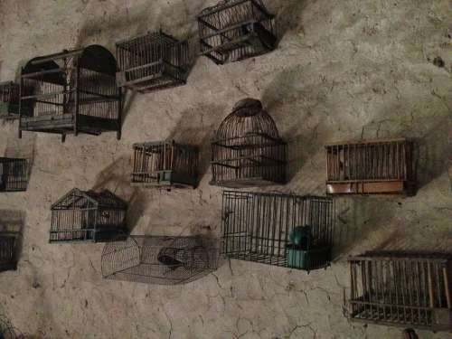 Cages Collection Wall