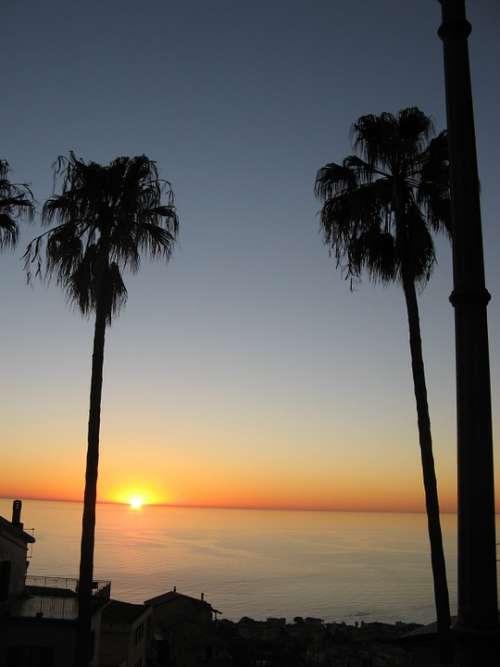 Calabria Sunset Sea Palms Shadows Sun Houses