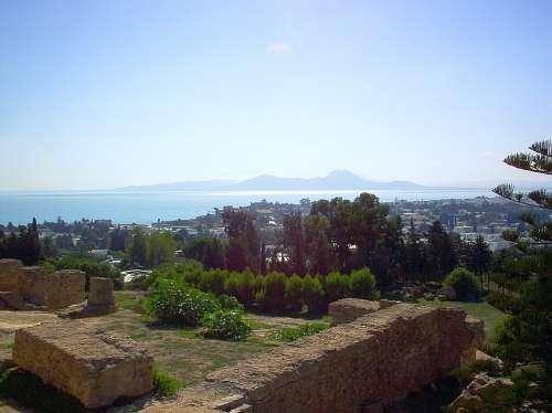 Carthage Ruins View Sunny Tunisia