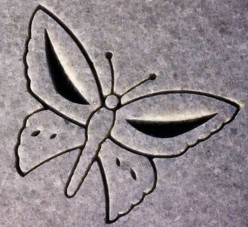 Carving Butterfly Animal Headstone Symbol Detail