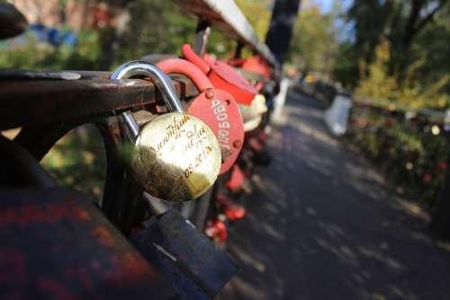 Castle Park Macro Photography Love
