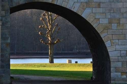 Castle Park Meadow Tree Park Schlossgarten Winter
