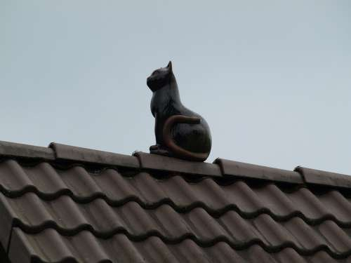 Cat Deco Roof Figure Decoration