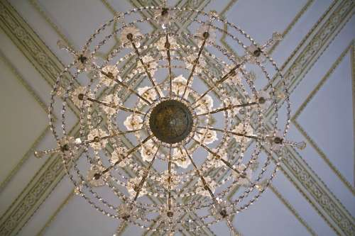 Ceiling Lamp Spider Decoration Paneling Detail