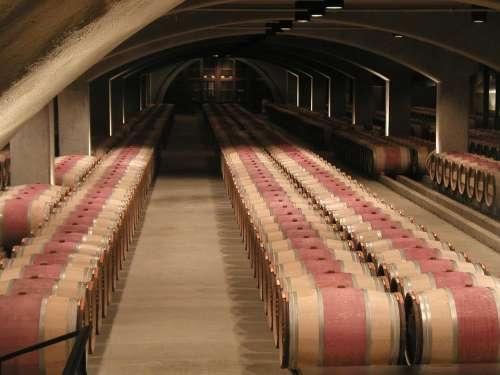 Cellars Wine Drink Food